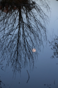 Moon reflection on our dam..
